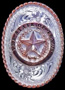 Texas State Seal Bolo Tie